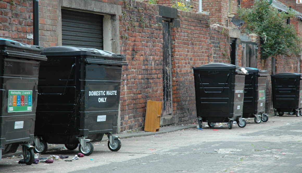 Communal Bins: Opinion Split