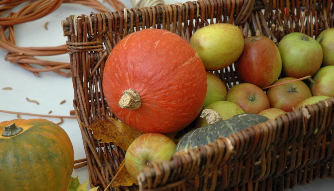 Apple Day 2016 – Photo Gallery