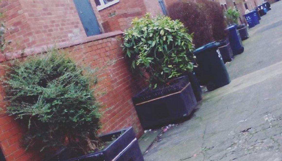Adopt a Street Planter