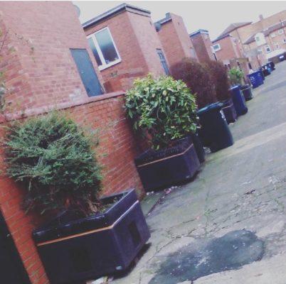 Prospect Back lane planters