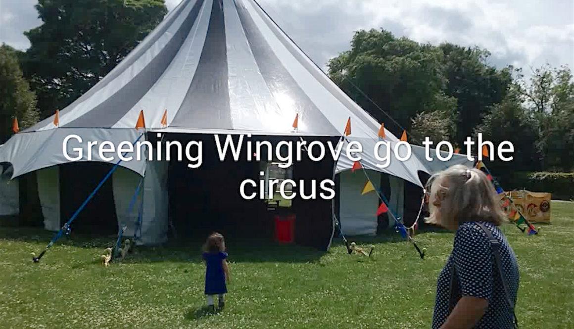 Videos At The Circus