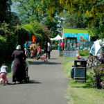 Party In The Park Picture Gallery
