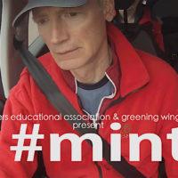 #mint