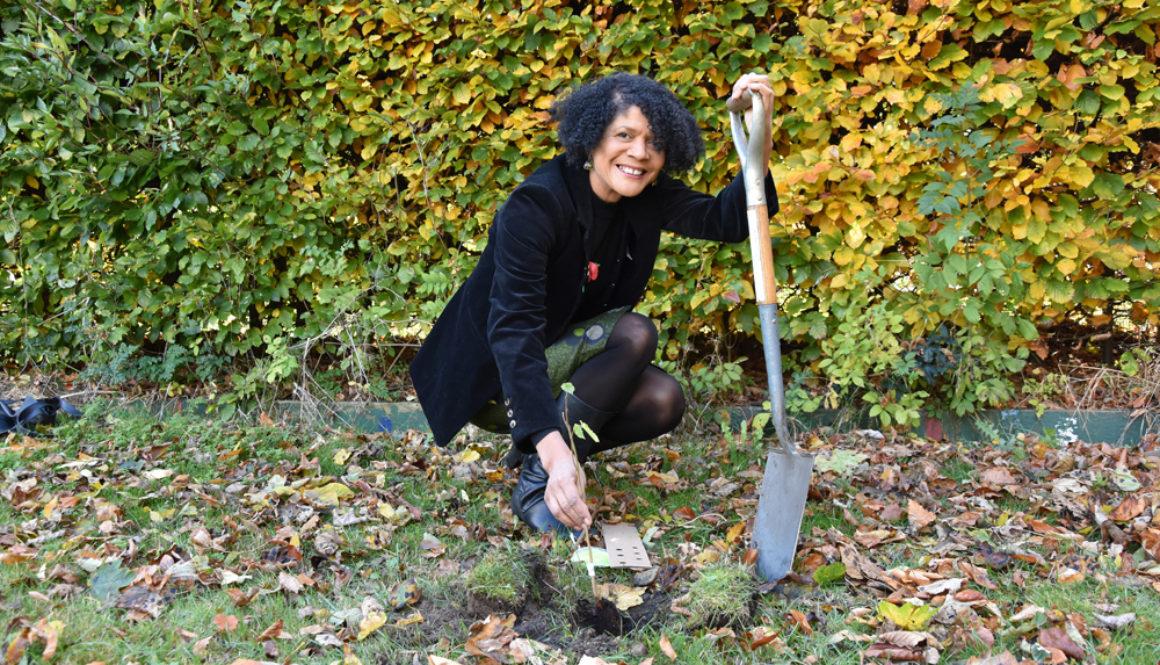 Commonwealth Tree Planting At Nuns Moor Park