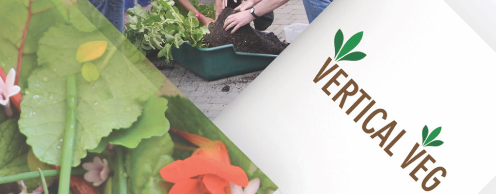 VV(crop)